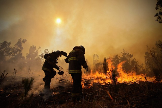 Bombeiros trabalham no combate a um incêndio florestal em Hualañe, uma comunidade em Concepcion, no Chile, em 26 de janeiro (Foto: Alejandro Zoñez/Aton/via AP)