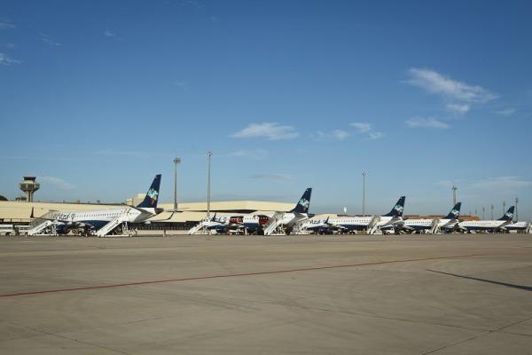 O CENIPA participou do Painel Internacional da Organização de Aviação Civil Internacional (OACI) com o objetivo de discutir a egurança Operacional da Aviação