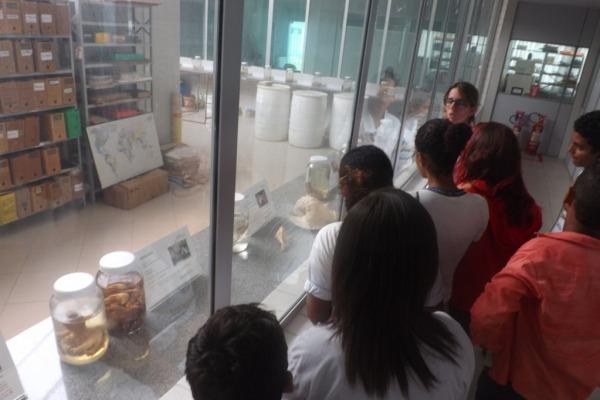 Cerca de 100 alunos conheceram o museu que reúne algumas das espécies encontradas apenas nas regiões Norte e Nordeste