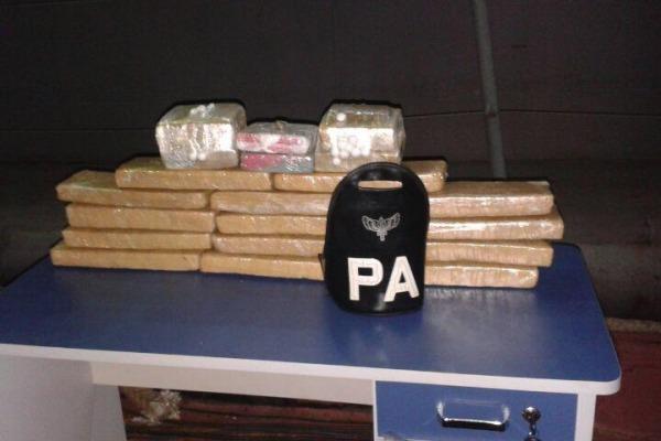 Cães de Guerra do Batalhão de Infantaria Especial são utilizados no combate ao narcotráfico na região