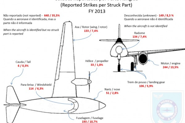 De acordo com o relatório, o motor é a parte mais atingida pelas aves  CENIPA