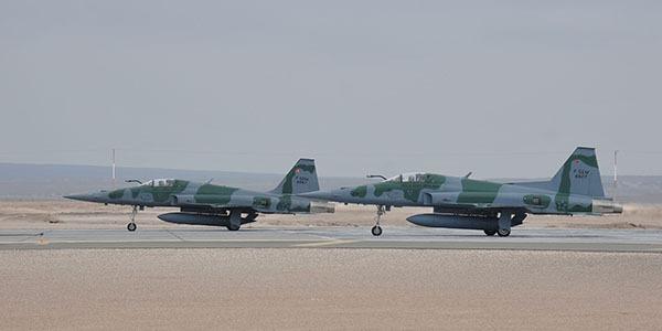 Mais de 20 aeronaves participaram de uma missão conjunta durante o exercício