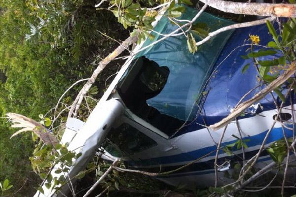 A vítima teve que pousar na copa de árvores localizadas em uma região alagada