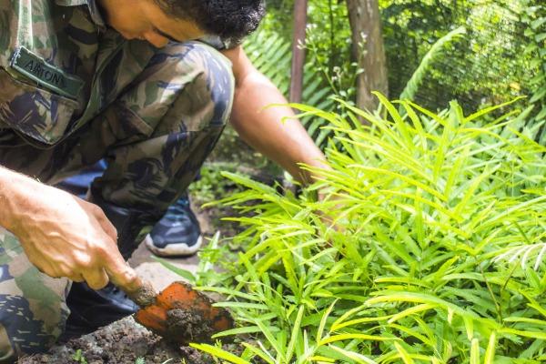 Efetivo realizou curso de noções básicas de produção de solos, preparação de mudas e plantio de árvores