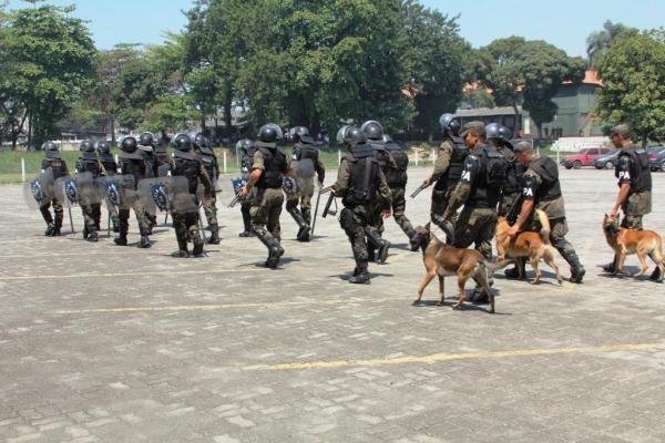Cães realizam operações junto ao Pelotão de Choque  S2 P. Santos