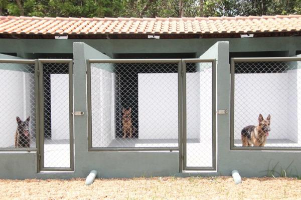 Canil tem boxes mais confortáveis para os cães  Sargento Carleilson