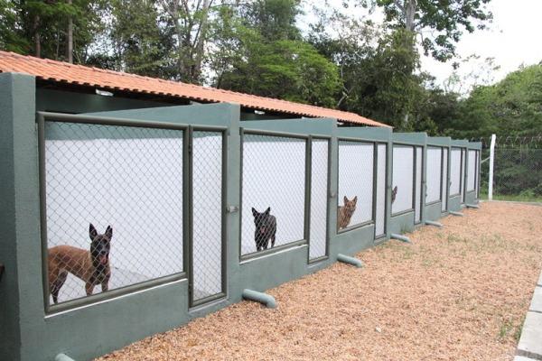 Novas instalações dispõem de mais recursos para garantir treinamento, preparo e bem-estar dos animais
