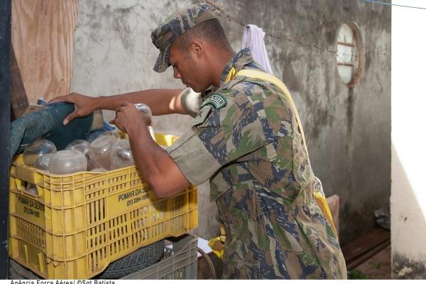 Eles devem auxiliar no combate e na prevenção do vetor em Recife e Parnamirim (RN)