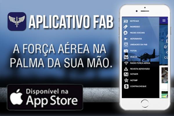 Alguns menus do app podem ser acessados offline