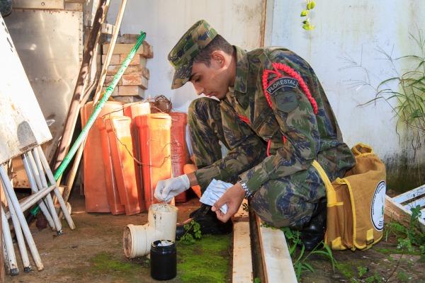 Em Vicente Pires, no DF, militares encontraram vários possíveis focos do mosquito em residências