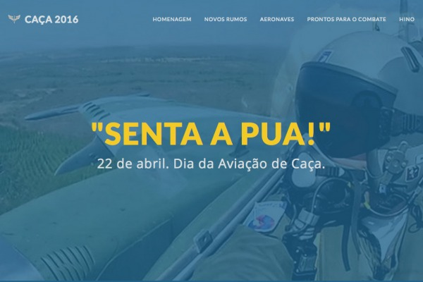 A matéria contém textos, fotos, vídeos e áudios sobre a Aviação de Caça