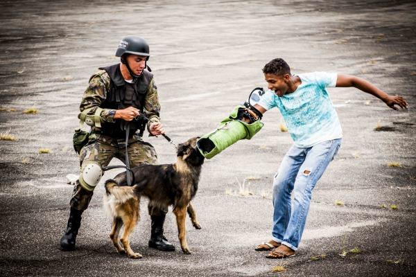 É a quarta vez que o Batalhão de Infantaria de Aeronáutica Especial de Recife realiza esse tipo de curso