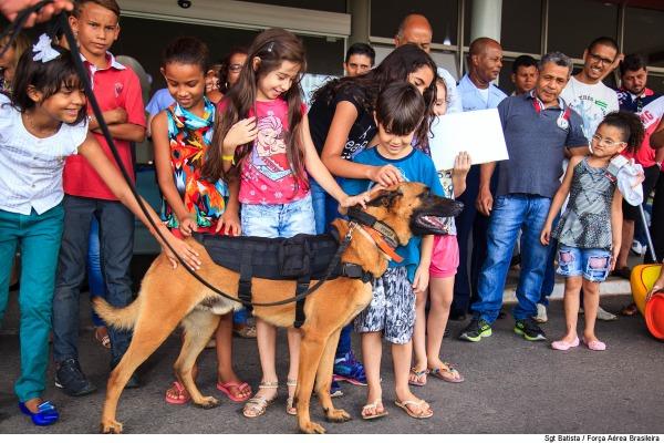 Volverine e Chacal, são os nomes dos dois cães que participaram da demonstração