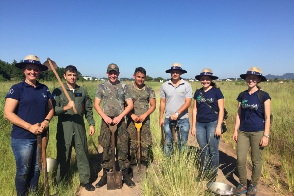 Sete mil mudas de árvores foram plantadas em parceria com a Universidade Federal de Santa Maria