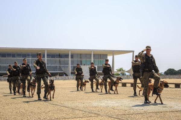 Pelotão de Cães de Guerra do Grupo de Segurança e Defesa da Ala 1