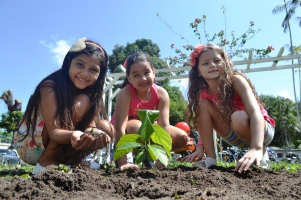As crianças participaram do plantio de mudas de guaraná