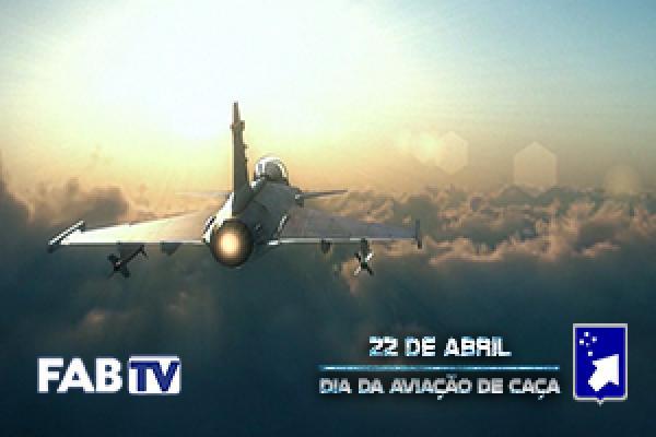 Material relembra a história do Primeiro Grupo de Aviação de Caça (1º GAVCA), o Esquadrão Jambock, na Segunda Guerra Mundial