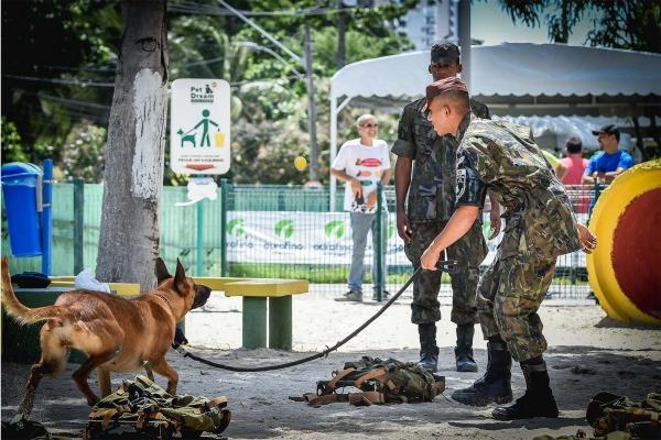 Animais demonstraram comandos básicos de disciplina, simulações de abordagem e busca por produtos ilícitos